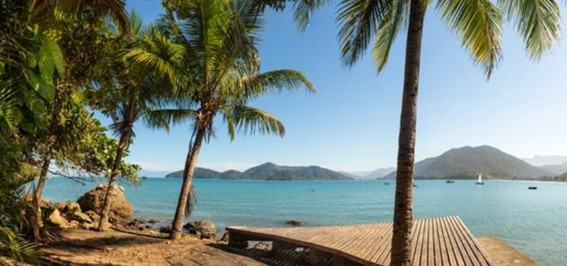 Swaying palm trees and an expanse of turquoise water in  Ubatuba